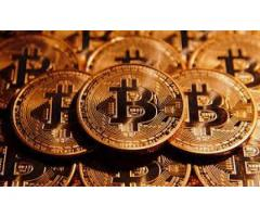 Bitcoin Investment plan- Just Multiply your bitcoin with office BTC | bitcoin investment hyip