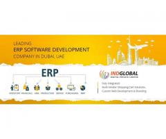 Indglobal- ERP Application Development Company in India