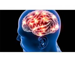 http://www.facts4order.com/brain-booster/cognitive-mind-focus/