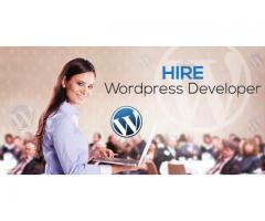 Are you looking to hire WordPress Developer