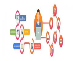 Hire iOS Developers at Affordable Cost - Twilight IT Solutions