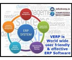 ERP development companies by verp