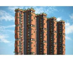 Total Environment In That Quiet Earth Best property at Hennur Road