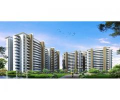 Sobha Palm Court Best Luxury Property at Yelahanka, Bangalore