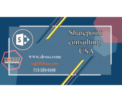 Sharepoint Consulting Company Houston