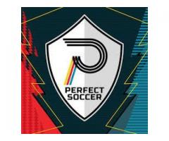 PERFECT SOCCER is the only full soccer training equipment and video skills training brand online