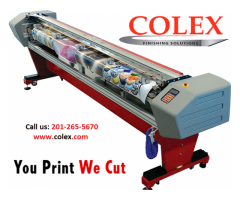 Colex Sharpcut Flatbed Conveyer Cutter | Top Most FOTOBA CUTTERS | Elmwood Park 07407 NJ