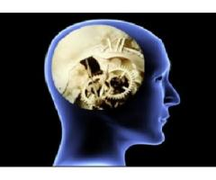 Contact For Brain Management Home Study Course Australia