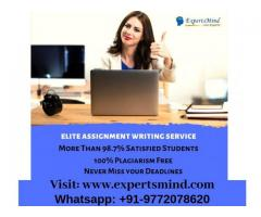 Looking For University Assignment Help – Visit Expertsmind!